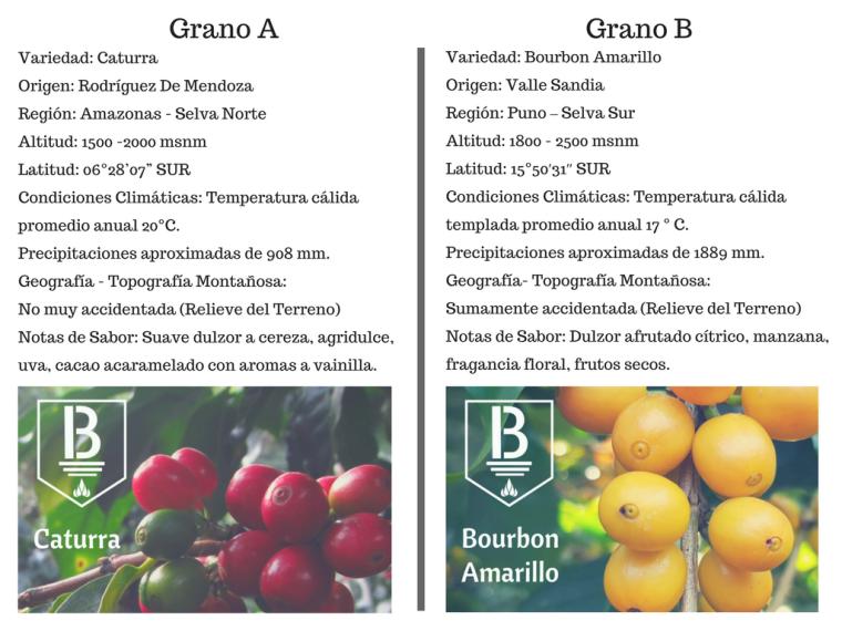 Grano A vs Grano B