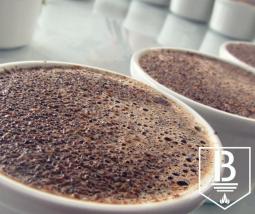 Cata de cafés en origen